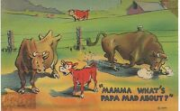 """VTG. CARICATURE CARTOON POSTCARD 1920's """"MAMMA WHAT'S PAPPA MAD ABOUT?"""" COLOR"""