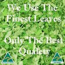 Queensland Grown Green Moringa Leaf Tea Certified Australian Made & Owned