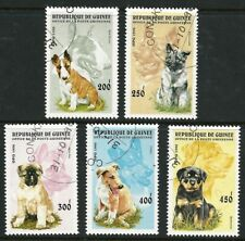 Guinea 1996 - Puppies (5) CTO