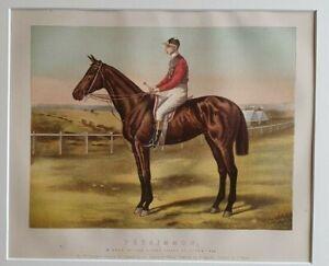 1899 Antique Horse Racing Print PERSIMMON Prince Wales Winner Epsom Derby Watts