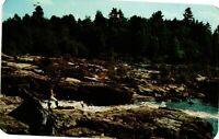 Vintage Postcard - Women Fishing Trout Black River Adirondack New York NY #1712