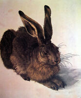 Dream-art Oil painting Albrecht Durer Wildlife animal - A Young Hare hand paint