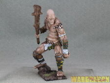WDS painted Ultraforge Mercenary Giant t15