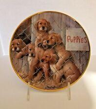 "Franklin Mint  Limited Edition Dog Plate, Irish Sitter Puppies ""Adopt A Puppy"""