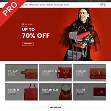 Bags Store Premium Dropshipping Website Turnkey Business For Sale
