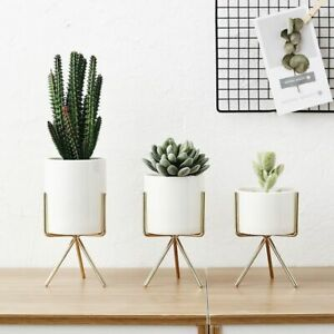 Ceramic Flower Pots Planters Nordic Minimalism Flower Vases Plant Decoration