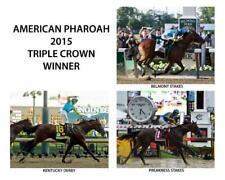 Dam to American Pharoah Triple Crown Winner MONEIGH® Print LITTLEPRINCESSEMMA