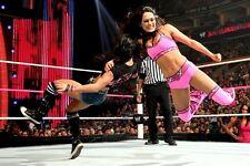 AJ Lee vs Bella Twins 4x6 WWE Divas Photo 10