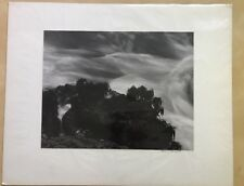 Charles K. Davenport: Point Lobos photograph print,Signed-Student Of Ansel Adams