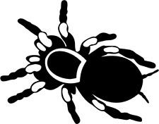Spinne Aufkleber Viele Farben Größe 13 cm x 10 cm DECUT DECAL JDM ANSEHEN