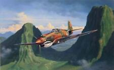 """""""Tiger Pass"""" Jim Laurier P-40 Flying Tigers AVG Print"""