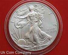 2013 American Eagle Liberty 1oz Fine Silver $1 One Dollar Coin
