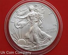 2013 American Eagle Liberty 1oz BELLE Silver $1 UN DOLLARO medaglia