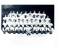 1964 WORLD CHAMPIONS ST. LOUIS CARDINALS 8X10 TEAM PHOTO   BASEBALL