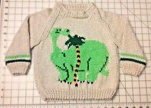 New Soft & Warm Little Boy's Raglan Sleeve Pullover Sweater W/ Dinosaur Design