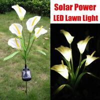 Outdoor Solar Power LED Calla Lily Flowers Garden Yard Lawn Light Landscape  D1