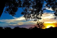 🌈🌺 Art Digital Image Photo Wallpaper Desktop SUNSET Collectible Photography 🌺