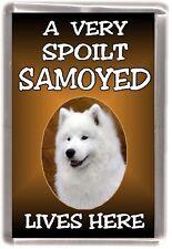 """Samoyed Dog Fridge Magnet  """"A VERY SPOILT SAMOYED LIVES HERE""""  by Starprint"""