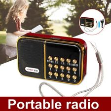 Portable Digital Radio Receiver FM/WMA/OGG/APE/FLAC/WAV MP3 Music Player Speaker