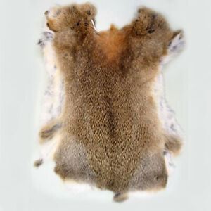 Rabbit Skin Natural Tanned Real Fur for Animal Training, Dummy, Crafts