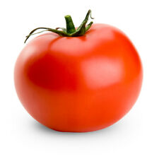 100 Pcs Big Red Tomato Seeds, Green Vegetables
