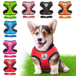 No-pull Dog Harness Outdoor Adventure Pet Vest Padded Handle Small -Extra Large