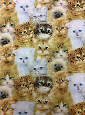 SPX Fabrics Window Tails 100% Cotton Allover Cats