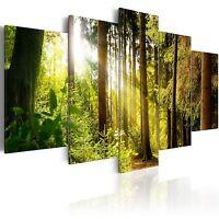 Wandbilder xxl Natur Landschaft Ausblick Leinwand Bilder Wohnzimmer c-A-0127-b-m