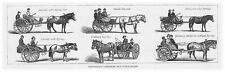 NORWAY Norwegian Carriages and Stolkjaerres - Antique Print 1886