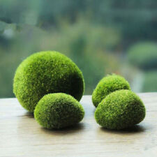 Marimo Stone Moss Miniature Dollhouse Garden Craft Fairy Bonsai Plant Decor GL