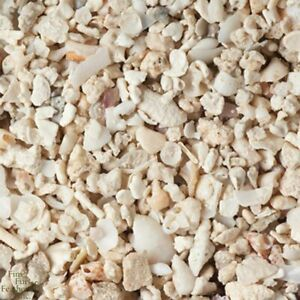 Crushed Coral ~ 1 lbs
