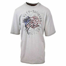 Harley-Davidson Men's American Flag S/S Tee (Retail $60)