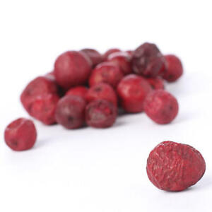 Package of About 85 Dried Look Mixed Red Plastic Berries for Decorating