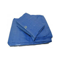Large 18ft x 12ft Eyeletted TARPAULIN Blue Waterproof Cover Groundsheet