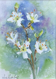 """Original  painting 'Blackthorn blossom'  Ready for a 10 x 8"""" frame"""