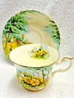 Royal Albert Country Scenes Primrose Hill  Cup and Saucer