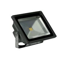 30 watts Led Flood light in metal body with one year warranty