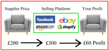 Business In A Box Ebay Dropshipping Business For Sale