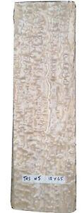 CONSECUTIVE SHEETS OF TAMO ASH VENEER 18 X 65 cm TAS #5  MARQUETRY