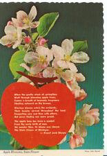 America Postcard - Apple Blossoms - Michigan's State Flower - Ref ZZ5136