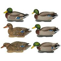 Harvester Pack 6 Avery Greenhead Gear XD Pro-Grade Mallard Decoy Decoys NEW