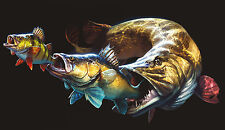 Pegatinas Hecht percas Zander fishing auto köderbox Pike Bass angel maleta