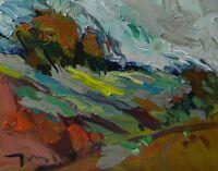 JOSE TRUJILLO MODERN ORIGINAL Oil Painting IMPRESSIONISM FAUVISM LANDSCAPE COA
