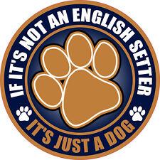"""Not An English Setter Just A Dog 5"""" Sticker"""