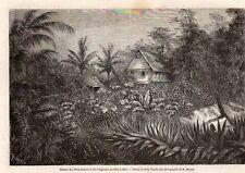 ILET LA MERE MAISON PERE JESUITE GUYANE FRANCAISE GUIANA IMAGE 1866 OLD PRINT