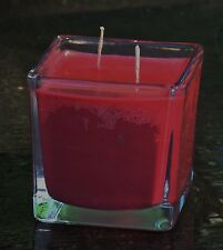 90hr Double Wick CHOCOLATE DIPPED STRAWBERRY Easter Eco Soy SQUARE GLASS CANDLE