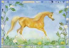 NEW * A5 * ARAB HORSE POSTCARD * PRINT * SPIRIT OF THE SUN * ANNIE MAIR LLOYD
