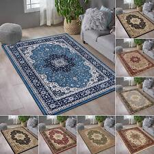 Vintage Style Area Rug Floral Pattern Living Room Bedroom Soft Carpet All Sizes