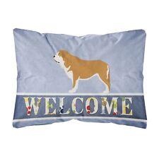 """Caroline's Treasures Welcome Canvas Fabric Decorative Pillow, Multicolor"""