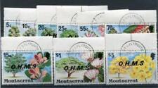 Cats Montserratian Stamps